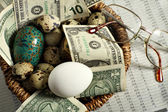 Investment nest egg — Stock Photo