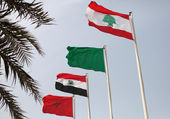 Arab league flags — Stock Photo