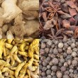 Curry spice composite - Stock Photo