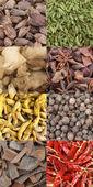 Curry krydda komposit — Stockfoto