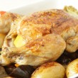 Roast chicken and vegetable — Stock Photo
