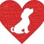 Word Heart Dog — Stock Vector #7126456