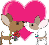 Chihuahua Love — Stock Vector