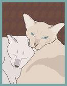 Gatti siamesi — Vettoriale Stock