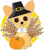 Chihuahua Thanksgiving — Stock Vector