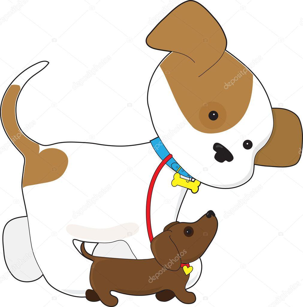 可爱的小狗散步的小狗