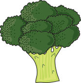 Brocolli — Stock Vector