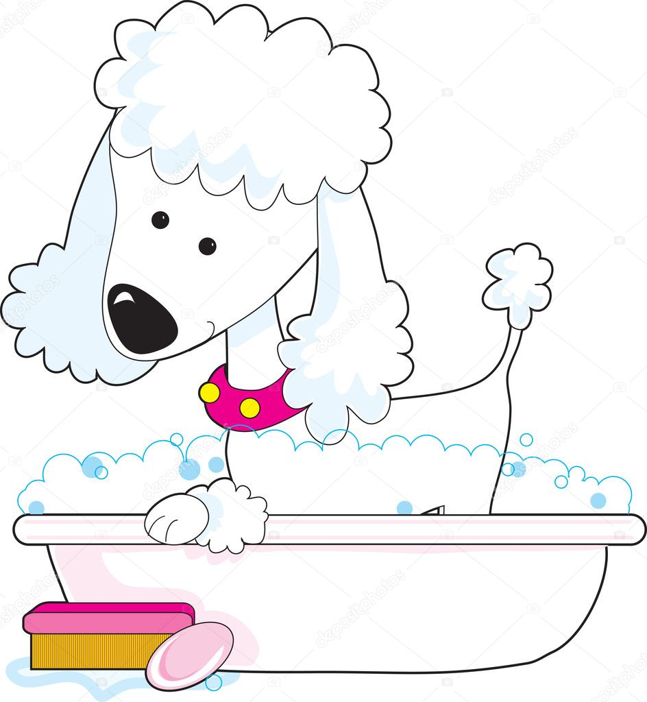 A cute poodle is getting a bath — Stock Vector #7177446