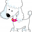 Stock Vector: Poodle