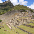 Machu Picchu, Peru — Stock Photo #7105427