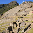 Machu Picchu, Peru — Stock Photo #7105476