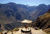 Colca canion, Peru — Stock Photo