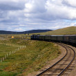 Trans-SiberiRailway , Mongolia — Stock Photo #7140337