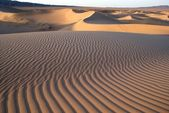 Gobi desert, Mongolia — Stock Photo