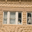 Window with Mannequins. - Stock Photo