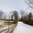 Stock Photo: Nature Trail in Ohio