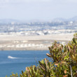 San Diego from Point Loma - Stock Photo
