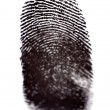 Finger Prints - Stock Photo