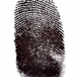 Finger Prints — Stock Photo