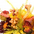Stock Photo: Fall Decoration