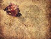Grunge rose background — Stock Photo