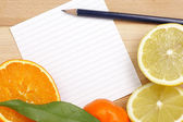 White paper with citrus border and blue pencil — Stock Photo