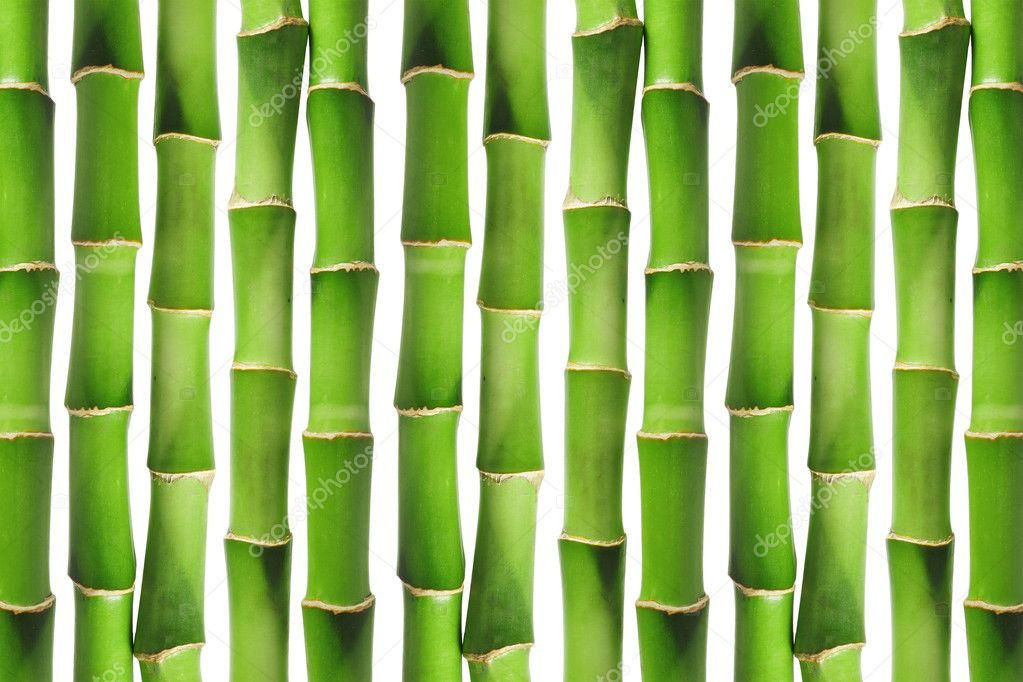 Green bamboo background image — Stock Photo #7109029