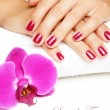 Beautiful hands with manicure — Stock Photo