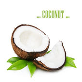 Coconut with green leaves — Stock Photo