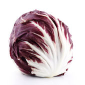 Fresh red radicchio — Stock Photo