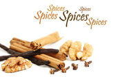 Spices with copy space — Stock Photo