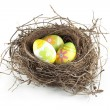Easter eggs in nest — Stock Photo #7370111
