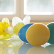 Painted Easter Eggs and Daffodils — Stock Photo