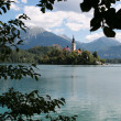 Bled Island in Slovenia - Stock Photo
