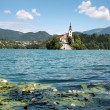 Bled Island in Slovenia — Stock Photo