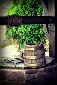Well and bucket — Stock Photo