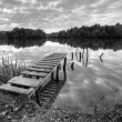 Stock Photo: Landspace photo of still lake in black and white