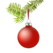 Red christmas bauble on branch — Stock Photo