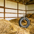 Stock Photo: Tire Swing Barn