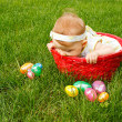 Easter Baby In Basket Peek — Stock Photo
