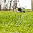Mow Ground Level Line — Stock Photo #7105778