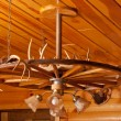 Antler Chandelier — Stock Photo