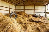 Tire Swing Farm — Stock Photo