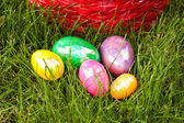 Easter Eggs Red Basket — Stock Photo