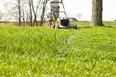 Mow Ground Level Line — Stock Photo