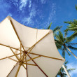 Stock Photo: Parasol and palm trees against tropical blue skies