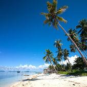 Tropical island in the sun — Stock Photo