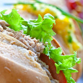 Sandwich rolls with egg, tuna and salad — Stock Photo