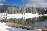 Mountain Lake in Early Winter — Stock Photo
