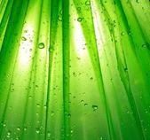 Fond vert avec une goutte d'eaupoignée de mains avec les poignets et collage de groupe cinq affaires — Photo